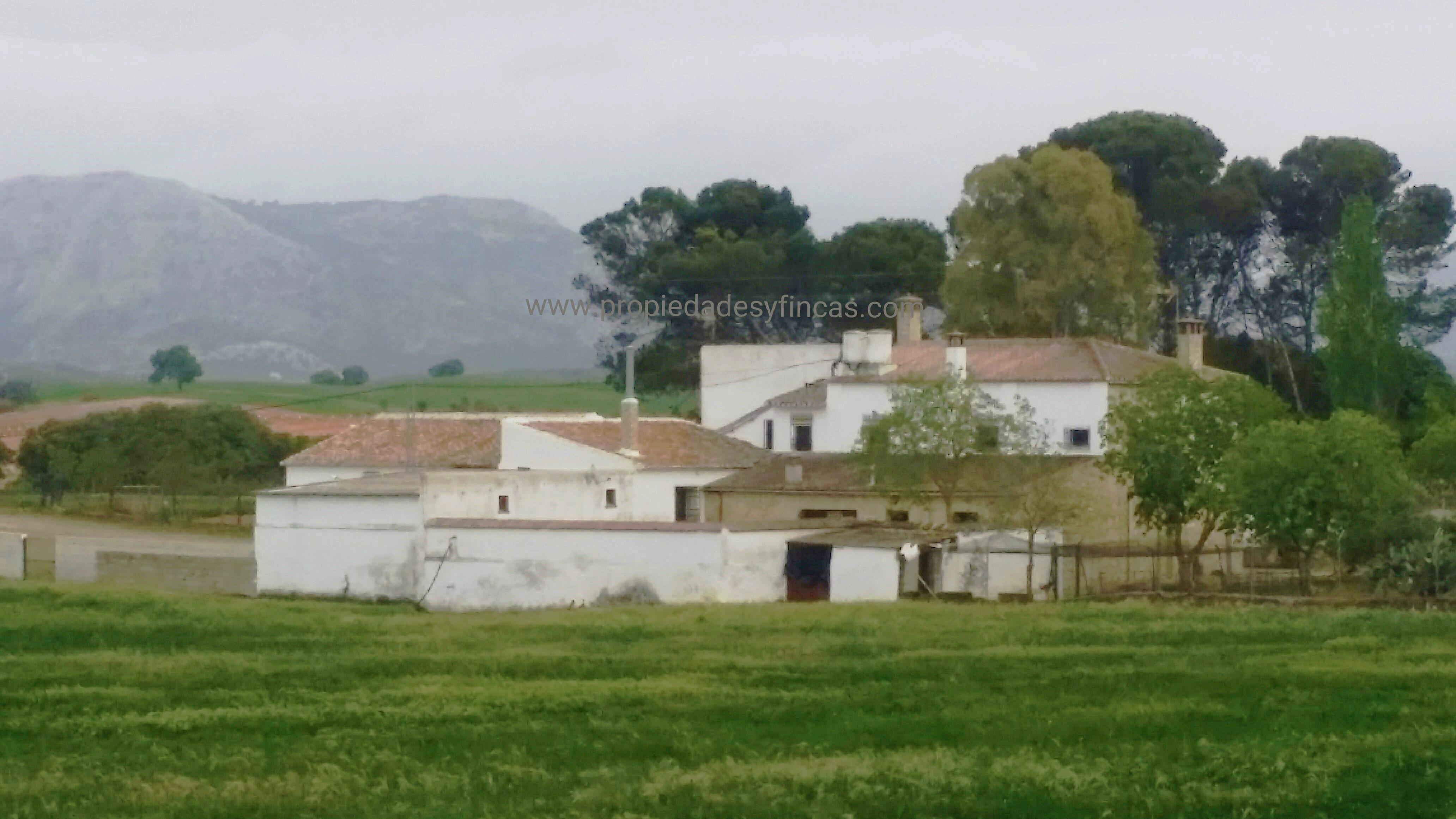 Casa de la finca propiedades fincas for Casas en la finca